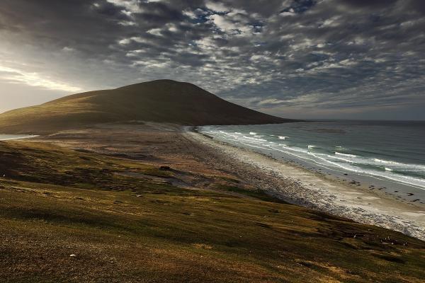 Pláže s kolonií tučňáků na sklonku dne