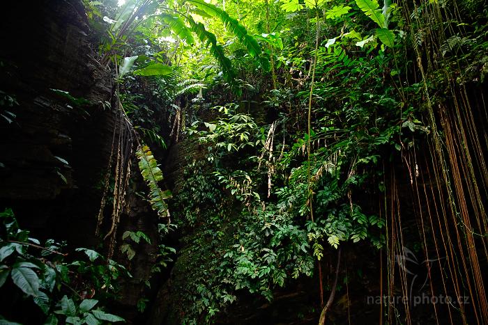 Vchod do jeskyně ke gvačarům