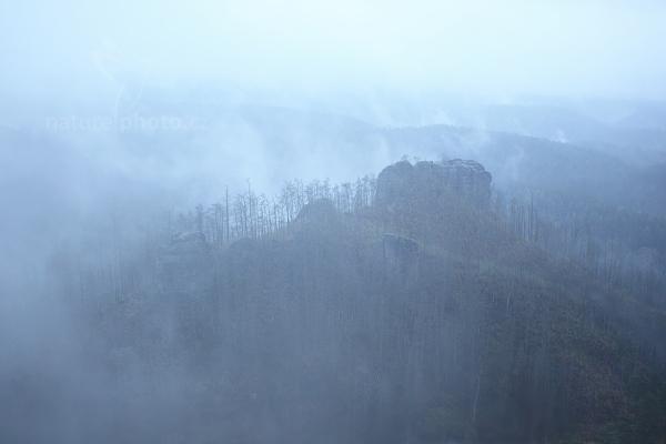 Vlhký mrak nad spáleným lesem