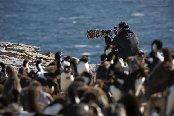 Autor příspěvku u kolonie tučňáků a kormoránů