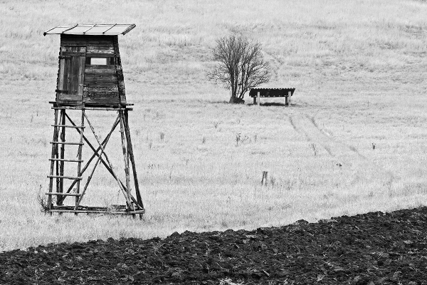 Zima na poli II.