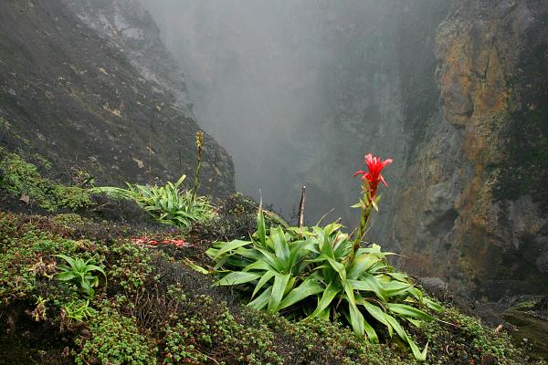 Soufrière (1467 m), ostrov Guadeloupe, východní Karibik