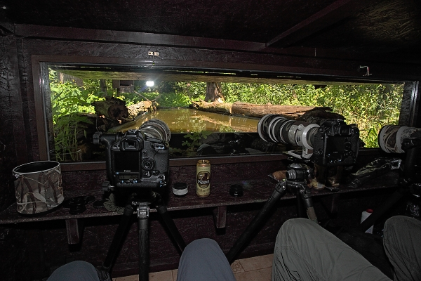 Pohled z fotografického krytu na bazének